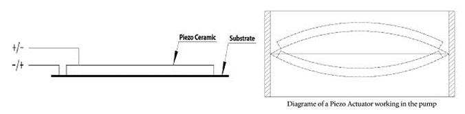 Piezo Ceramic Actuators